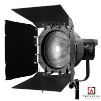 NanLite FL-20 Fresnel Lens For Forza 300
