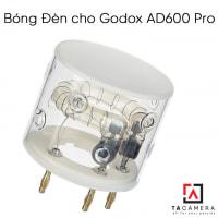 Bóng đèn AD600 Pro FT600