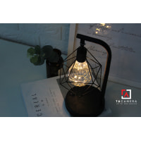 LED Fairy Lights - Đèn Đom Đóm Kèm Giá Đỡ Vintage TA2914 - Nguồn AA + USB