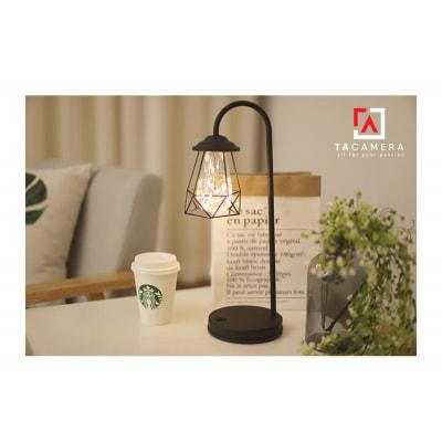 LED Fairy Lights - Đèn Đom Đóm Kèm Giá Đỡ Vintage TA2916 - Nguồn AA + USB