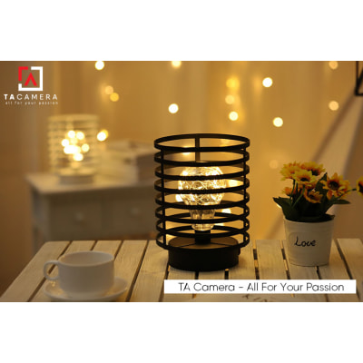 LED Fairy Lights - Đèn Đom Đóm Kèm Giá Đỡ Vintage TA2919 - Nguồn AA